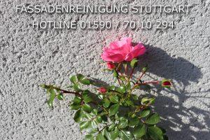 Fassadenreinigung Stuttgart